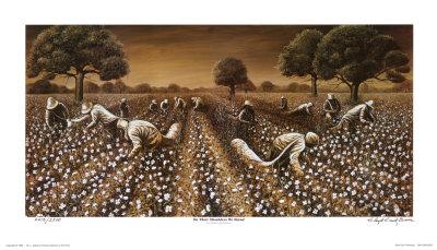 i remember cotton